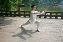 kungfu-taichi (13)