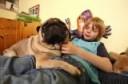 hund-haustier-familie